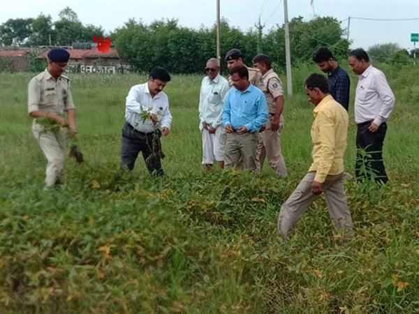 Agricultural survey work affected by overflow crop survey