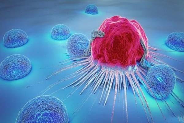 Scientists discovered new tricks for better screening of cancer