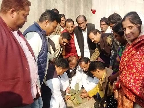 Congress celebrated Sonia Gandhi's birthday by planting saplings